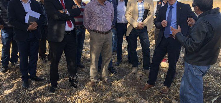 Buscan productores detonación de zona mezcalera