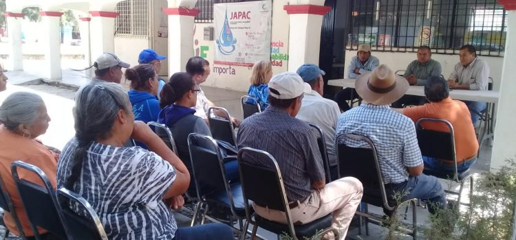 Impulsara gobierno producción de agave en la región