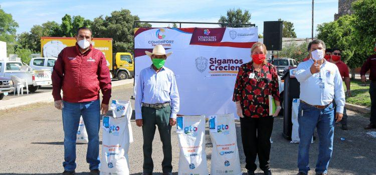Apoyan con semilla de maíz a 78 productores agricolas